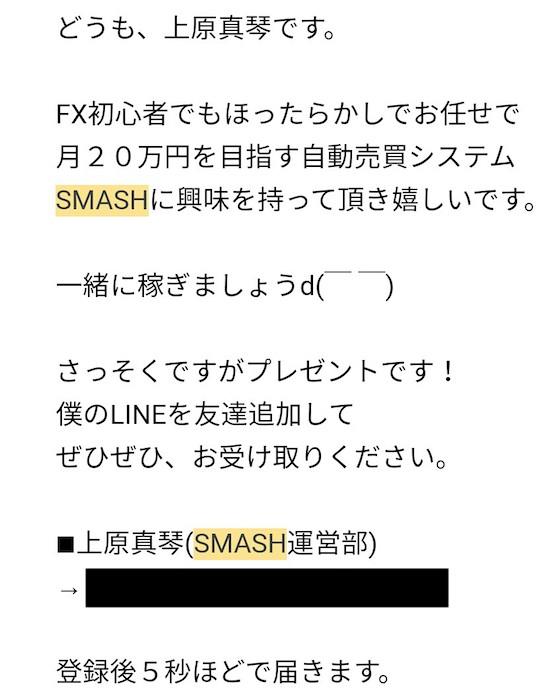 スマッシュ(SMASH)画像2