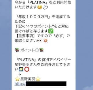 プラチナ(PLATINA)画像3